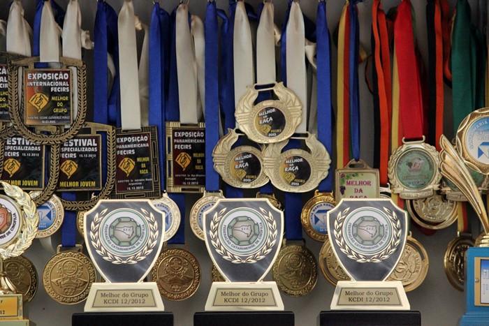 Trofeus e medalhas 2.JPG