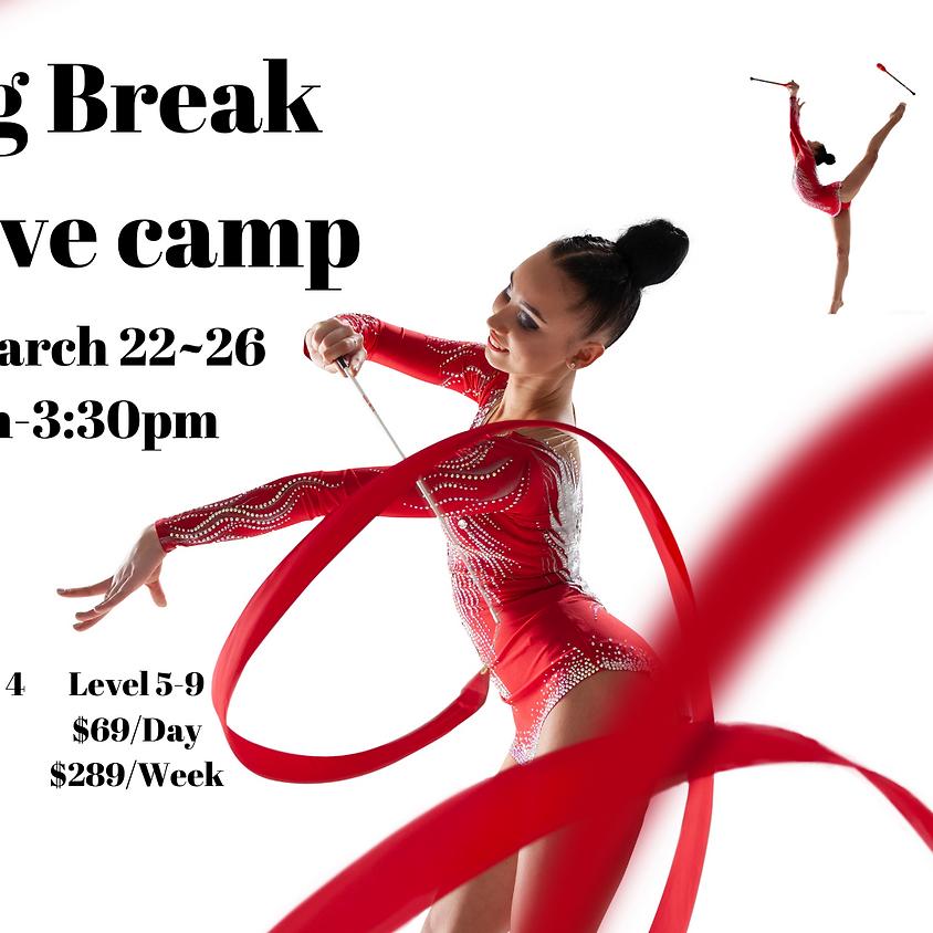 Spring break intensive camp