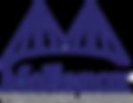 mellanox-technologies-logo-BAA7F3BB42-se