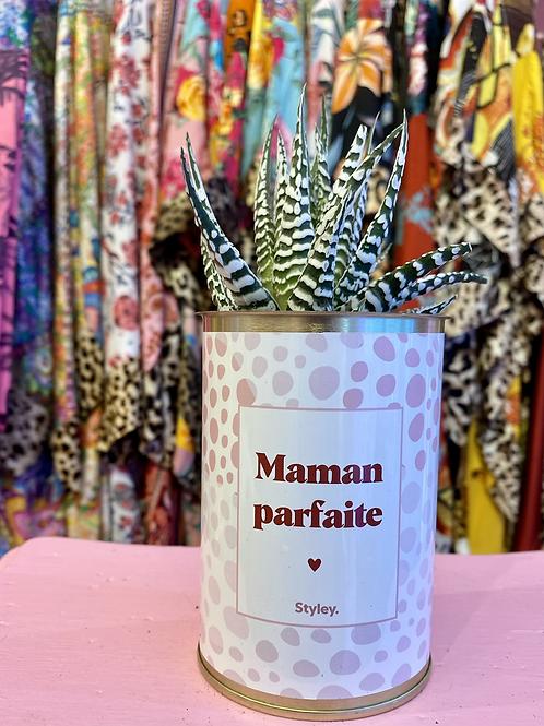 PLANTE CACTÉE  en CANETTE « MAMAN PARFAITE