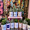 Thumbnail: PLANTE CACTEE en CANETTE « EN COUPLE AVEC MON CHAT»