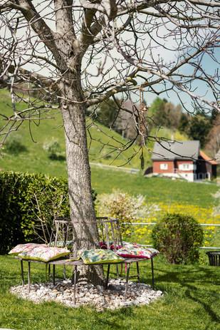 ALTANGEREL-WODNAR Ordination Walzhausen Bodensee Garten Sitzmöglichkeit