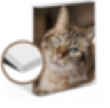 Hardcover_Cat_mx03a-1.png