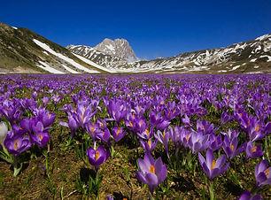 Abruzzo-Italy.jpeg