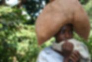 דוד בן צור | טיולים לאפריקה