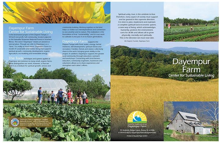 brochure pdf for links.jpg