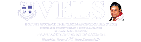 small-logo (1) vels 2019.png