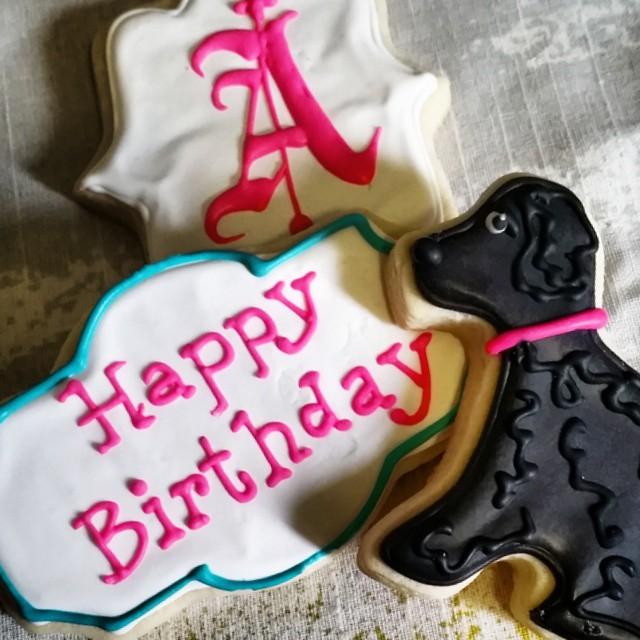 Instagram - The birthday girl @asuedkamp loves her dog Murphy...jpg