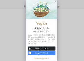 農業のことならベジカで聞こう!  Vegicaをリリース