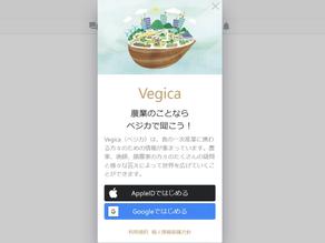 農業のことならベジカで聞こう!| Vegicaをリリース