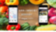 veggieベジー表紙ワイド.jpg