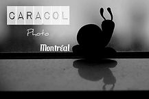 Caracol photo montreal bussiness card.jp