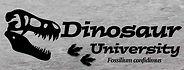 Dinosaour uni.jpg