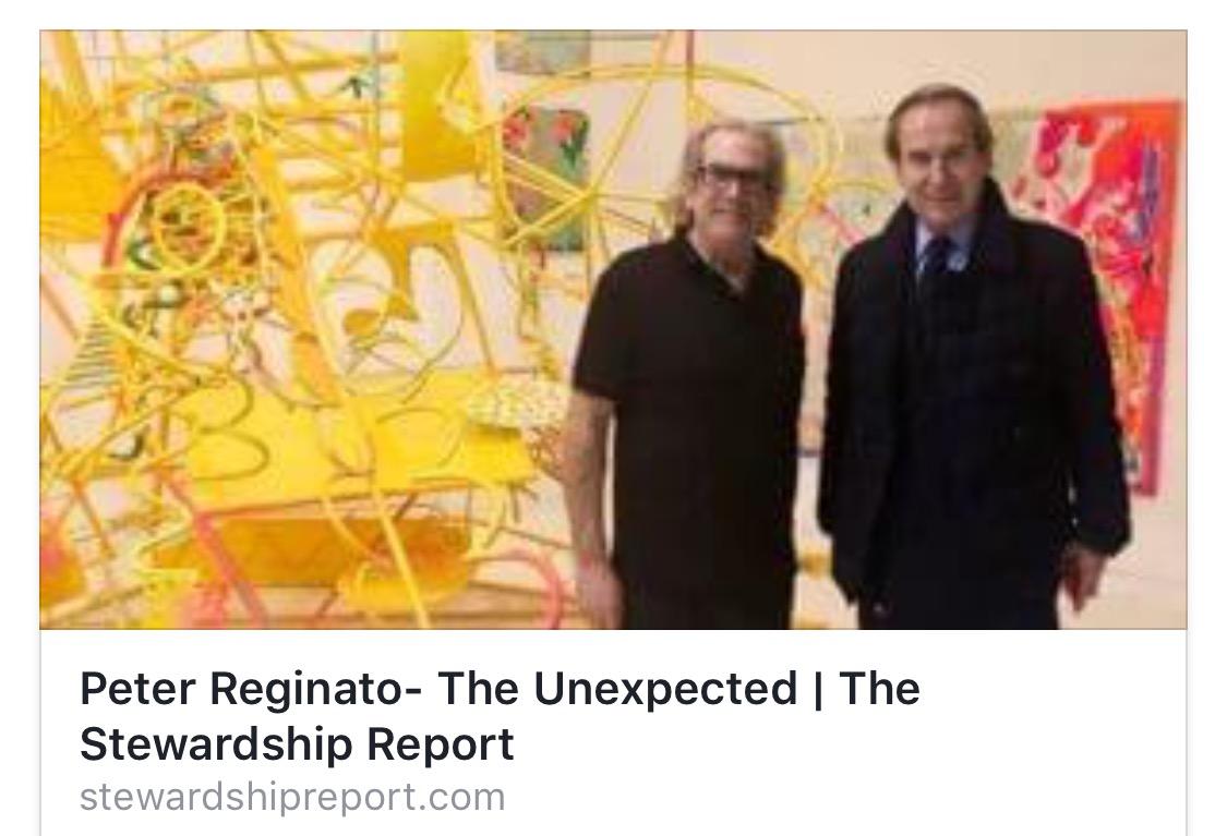 Peter Reginato- The Unexpected The Sterwardship Report