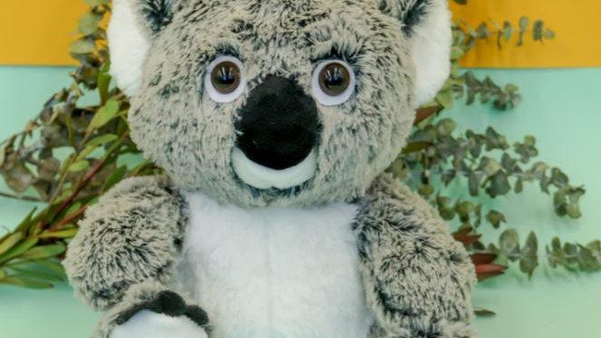 Energy-Koala