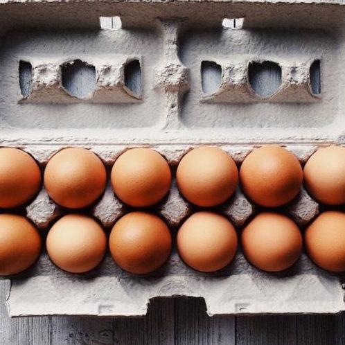 1 Dozen Cage Free Eggs