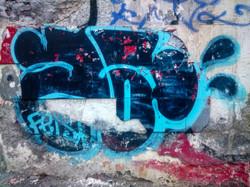 DSC_0224-1
