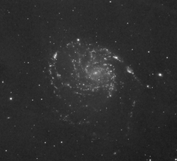 M101_Ha_Oiii_Sii_15hrs_pixed