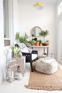 Plantas que refrescan en cualquier estancia_ Fityourhouse