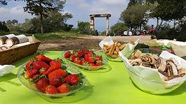 carmel outdoor meal 1.jpg