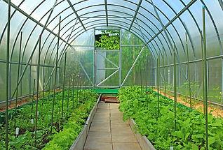 Сельскохозяйственное сооружение