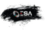 ABOUT ESA.png