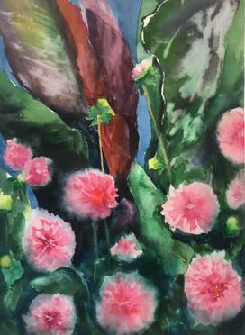 Dakotah's Flowers