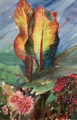 Ensete in Watercolor