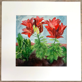 Baroque-collared Lillies