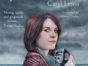 The Jeweller | Caryl Lewis