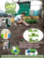 Акция Чистый двор.jpg