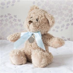 Little Baby Boy Bramble Bear