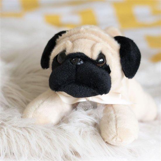 Personalised Perry The Pug