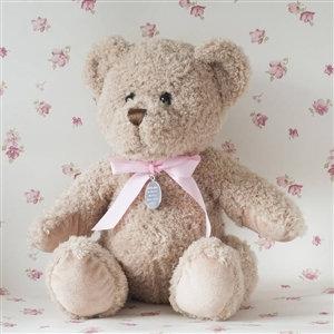 Little Baby Girl Bramble Bear