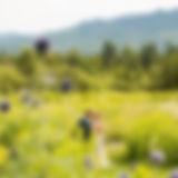 Lauren_Tom-6.jpg
