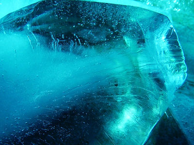 ice-2361424_1920.jpg