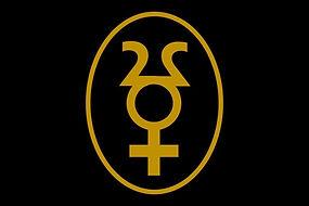 Adrastos Inc Logo-Black Web.jpg