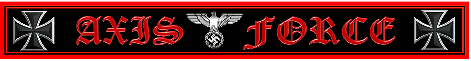 Axis Force Logo.png