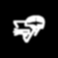 GObike Buffalo icon-bike safety