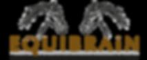 Equibrain_Logo_482x200px1.png