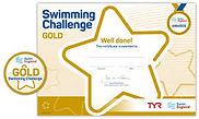 gold challenge.jpg