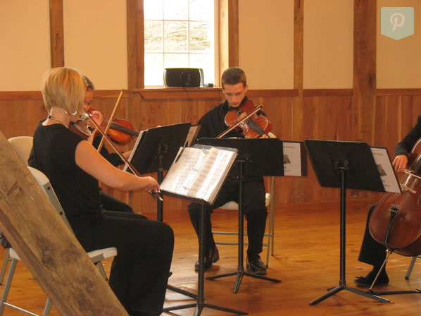 special event-violins