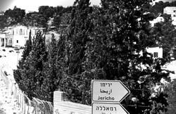 somewhere in palestine