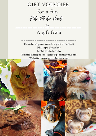 Pet Photography Gift Voucher_Page_1.png