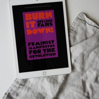 Burn It Down: Feminist Manifestos for the Revolution