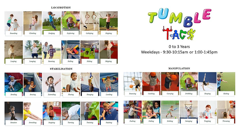 Tumble TAGS Poster.jpg