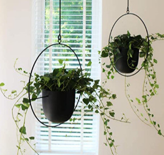 Flirty Hanging Planters