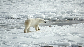 Kälte-Klima-Richtlinie tritt in Kraft