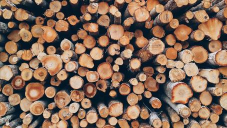 Förderung von Investitionen in der Holzwirtschaft.