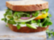 2012-r-xl-vegetable-sandwich-with-dill-s